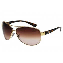 Gafa de sol Ray-Ban RB3386 ACTIVE LIFESTYLE 001/13 ARISTA BROWN GRADIENT