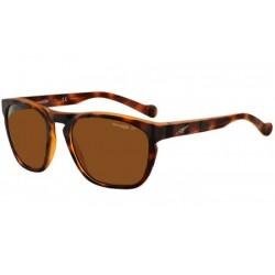 Gafas de sol Arnette AN4203 GROOVE 215283 FUZZY HAVANA