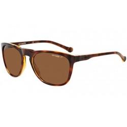 Gafas de sol Arnette AN4212 208783 HAVANA